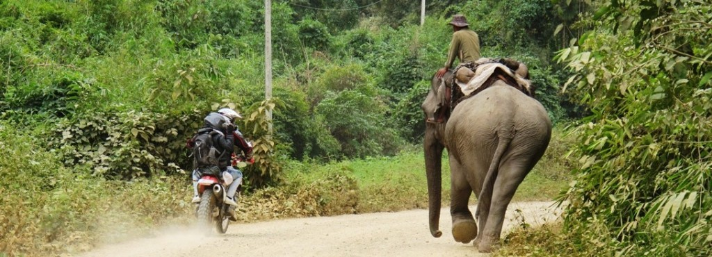 Elephant Laos Motorbike tour 3 days